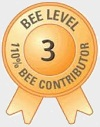 BEE_lvl_3_small